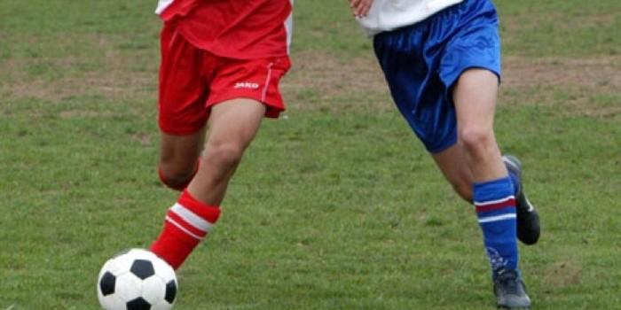 1706309-calcio