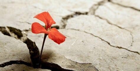 La resilienza raccontata dagli adolescenti – Episodio 1